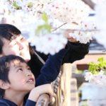 年間行事(4月)お花見会